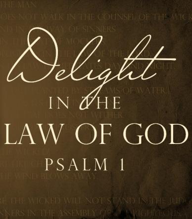 delight-law